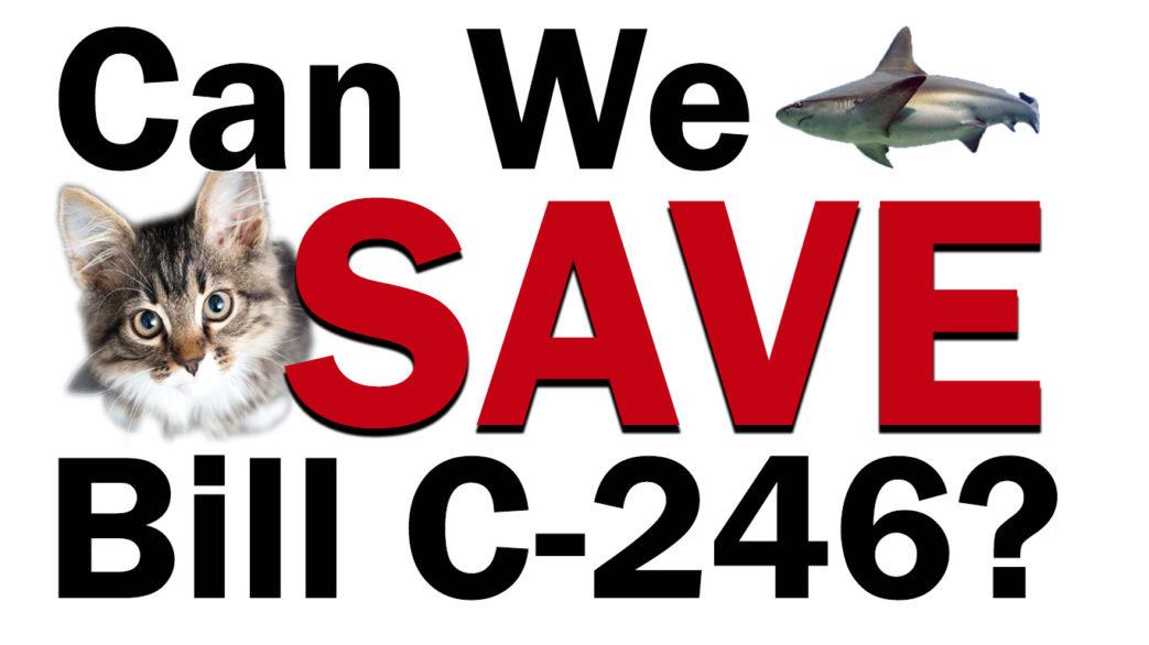 Save Bill C-246