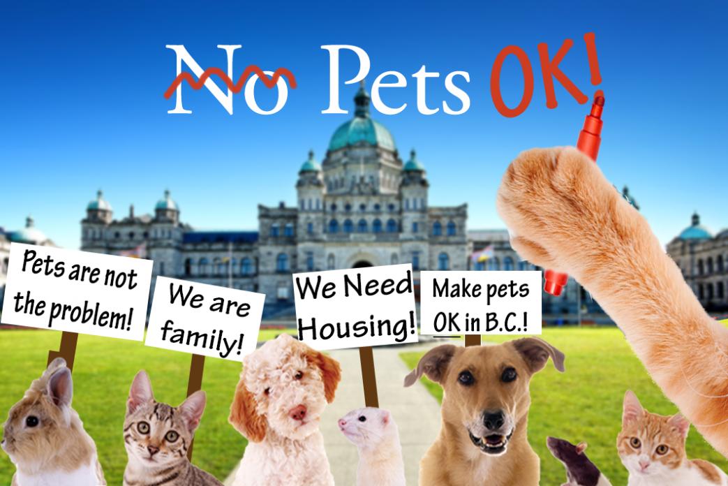 Pet-Friendly Housing
