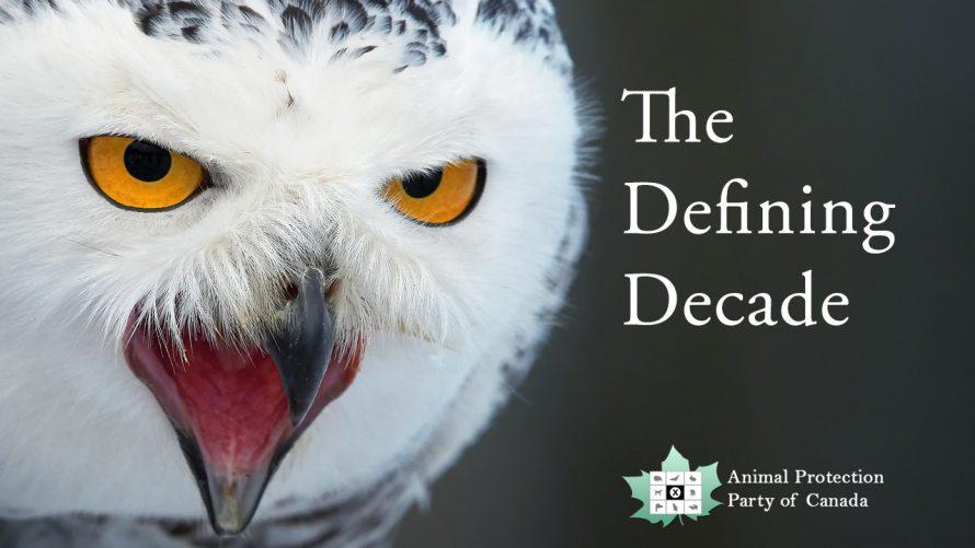 2020 defining decade