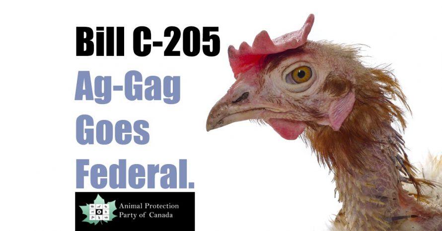 Bill C205