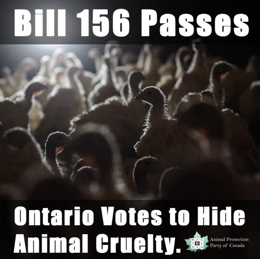 Bill 156